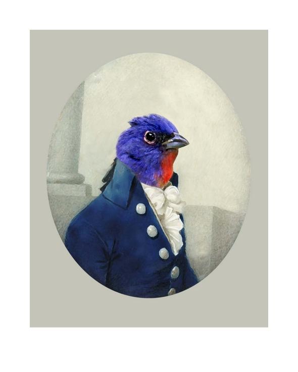 oiseaux2